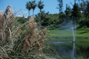 IWC_GolfSeptember21_2015TurtleHill-52