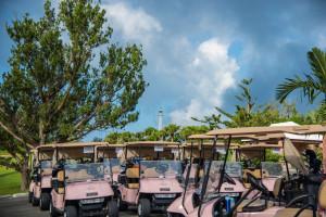 IWC_GolfSeptember21_2015TurtleHill-9